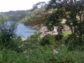 Uitzicht Man o War Bay